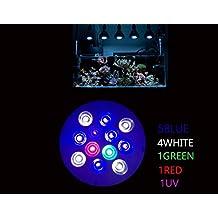 DLPJ 36W Led Aquarium Bulb UV included Reef Light Led Full Spectrum Light for NANO Tank , Fresh Water Tanks,Marine Aquarium Tank,Seaweed Algae Coral Growth (R:B:G:W:UV=1:5:1:4:1