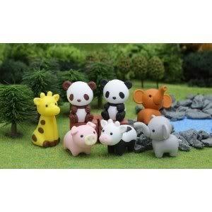 Cute Amazon Animals