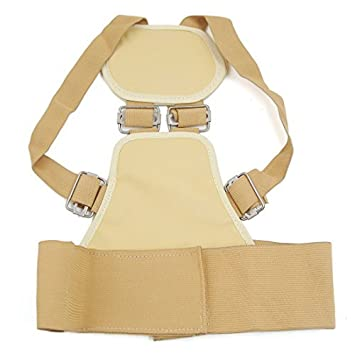 Amazon.com: DealMux Voltar Shoulder Postura Spine Corrector ...