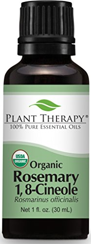 rosemary essential oil organic - 6
