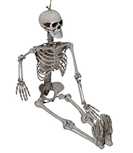 "Halloween Skeleton Skull, 65"", Full Body Skeleton with Movable /Posable Joints, Halloween Props, Best Halloween Decoration"