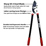 Gonicc Professional 30 inch SK-5 Steel Blade