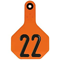 Y-TEX CORPORATION Medium Orange Tag (25 Pack)