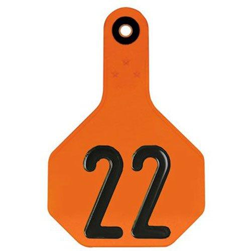 Y-TEX CORPORATION Medium Orange Tag (25 Pack)