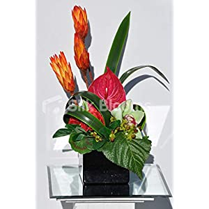 Silk Blooms Ltd Artificial Fresh Touch Pink Anthurium and Orchid Arrangement w/Preserved Ginger Stems and Foliage 8