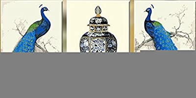 Pack of 3 [Wooden Framed] Diy Oil Painting, Paint By Number-Blue Peacock And Jar 16*20 Inch