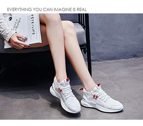 Salvajes Viejos Blancos Zapatos Los Que Pequeños Blanco Tejidos Vuelan Sbl Estudiante Del Ins Ocasionales Corrientes Femeninos Respirables z6dwxq