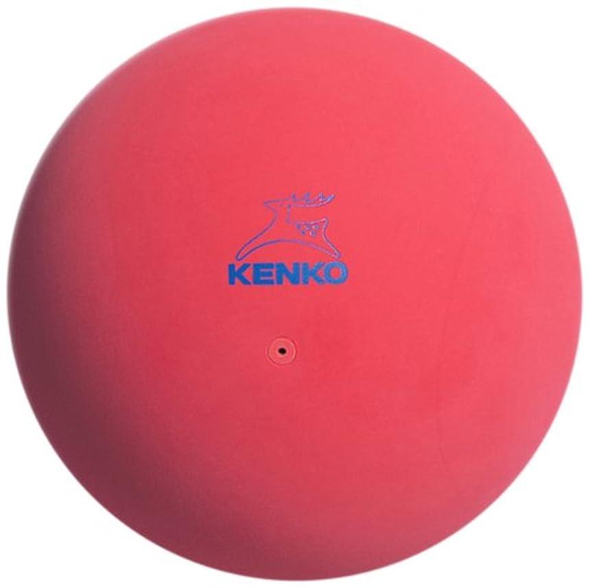 トランスペアレント釈義アクセサリーナガセケンコー(KENKO) ソフトテニスボール かご入りセット 公認球10ダース(120個) TSOYK-V