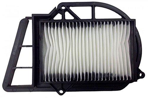 Champion air filter Champion caf3203 Yamaha X-Max 250 cc ()/X-Max 250 caf3203 Air Filter Air Filters (Air Filter):