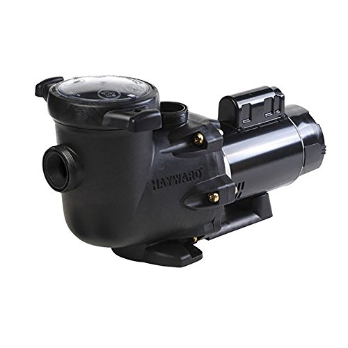 (Hayward SP3215X202 2 HP Pool Pump, Dual-Speed, TriStar)