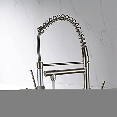 FLG Commercial Pull Down Kitchen Sink Faucet with Sprayer