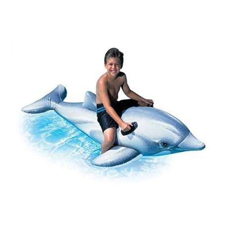 INTEX niños Piscina Divertido Hinchable flotadores niños Aqua Jugar Juguete de Montar, diseño de delfín: Amazon.es: Deportes y aire libre