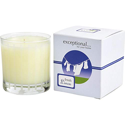 FRESH LINEN - LIMITED EDITION by Exceptional Parfums FRESH LINEN SCENTED 6 OZ. (Package of ()