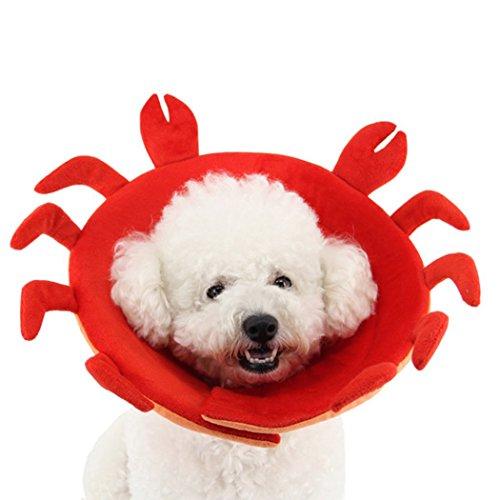 Pet Cone, Legendog Dog Cone Adjustable Pet Recovery Collar Soft Edge Protection Collar delicate