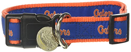 NCAA Florida Gators Dog Collar, Medium/Large