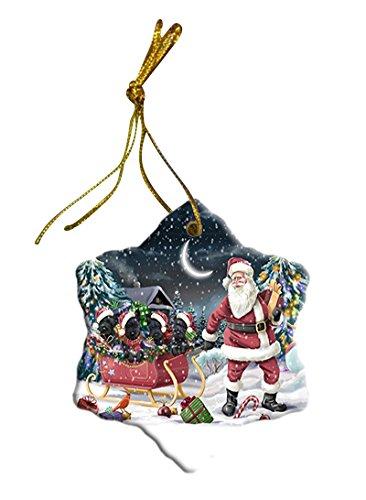 Scottish Terrier Paintings - Santa Sled Dogs Scottish Terrier Christmas Star Ornament POR2746