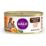Halo Gluten Free Natural Wet Cat Food, Indoor Chicken &Trout Recipe Pate, 5.5-Ounce (Pack of 12)