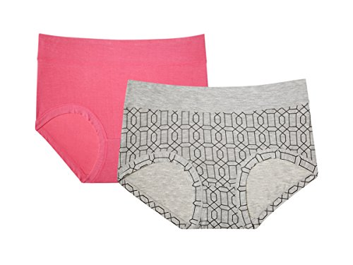 Comfort Luxe Brief (Kathy Ireland Women's 2 Pack Of Super Soft Comfort Brief Cut Panties Heather Grey/Pink Medium)