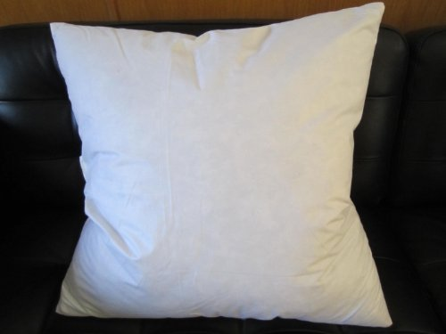 Bed Of Roses 40 X 40 40% Feather 40% Down Pillow Insert Made In Best Down Pillow Inserts 22x22