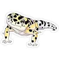 Andrews Mall Bold Leopard Gecko Stickers (3 Pcs/Pack)