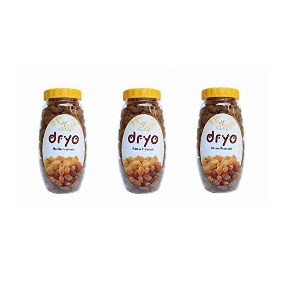Dryo Dry Fruit Combo Raisin (Pack of 3)