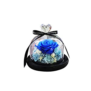 Vosarea Everlasting Flower Glass Cover Immortalized Flower Never Withered Rose Flower for Wife Lover Girlfriend Wedding Anniversary Birthday Present (Blue) 28