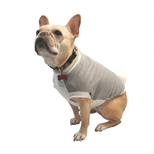 Grey Easter Bunny Dog Tshirt Costume - French Bulldog Clothing Size Small (up to 24 lbs) (Frenchie Costumes)