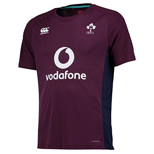 Canterbury 2016-2017 Ireland Rugby Superlight Poly Training Tee (Plum)