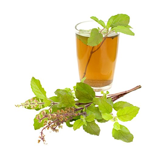 Organically Grown Tulsi Loose Leaf Tea Bulk Bag, Indian Holy Basil Loose Leaf Herbal Tea, Caffeine Free (10 Ounces)