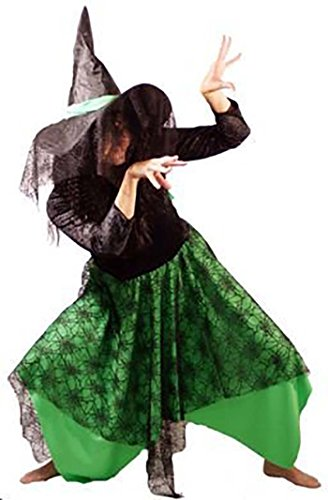 Wicked Costumes Musical (Stage-Panto-Wicked-Halloween BLACK & GREEN WITCH with HAT Ladies Costume - All Ladies Sizes (LADIES 12))