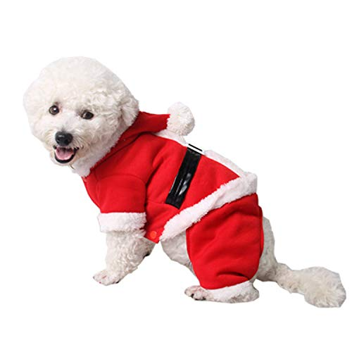 Amazon.com: Momo - Disfraz de Navidad para mascota, gato o ...