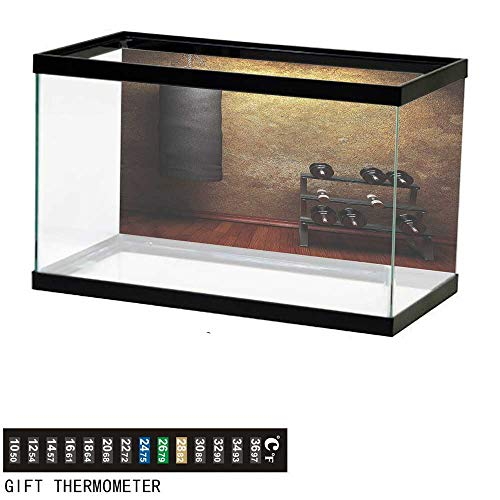 """bybyhome Fish Tank Backdrop Fitness,Gym Room and Dumbbells,Aquarium Background,60"""" L X 24"""" H(152x61cm) Thermometer Sticker"""