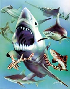 White Sharks Collage Ocean Animal Kids Room Wall Decor Art Print Poster (16x20)