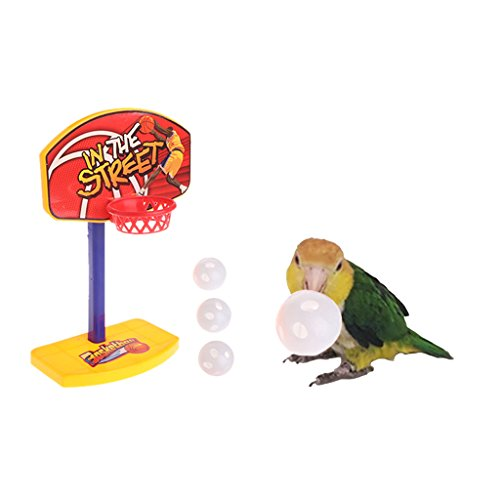 Stebcece Parrot Basketbal Pet Birds Ball Chew Toy Hoop Prop