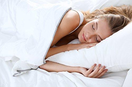 Digital Decor Set of Two (2) Premium Gold Down Alternative Sleeping Pillows Plus 2 Free Pillowcases