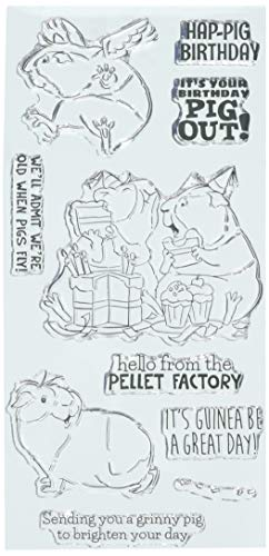 Art Impressions 5003 Guinea Pig Out Funny Farm Clear Stamps, Multicolor