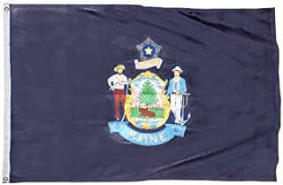 product image for Maine Flag 12X18 Inch Nylon