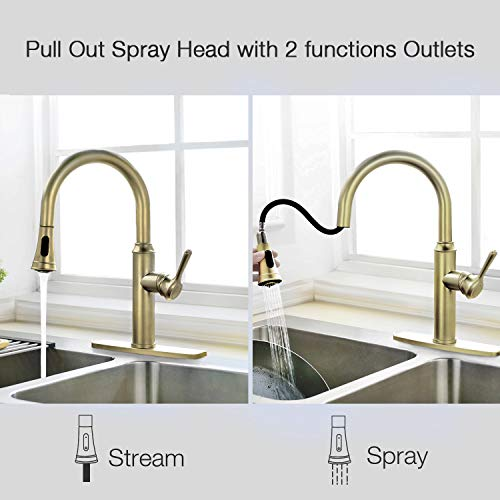 Peppermint Kitchen Sink Faucet Matte Champagne Bronze Single Handle with Pull Down Sprayer Matte Gold by Peppermint (Image #2)