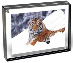 Color Edge Magnet Frame by Canetti-Graphite-8x10 inch