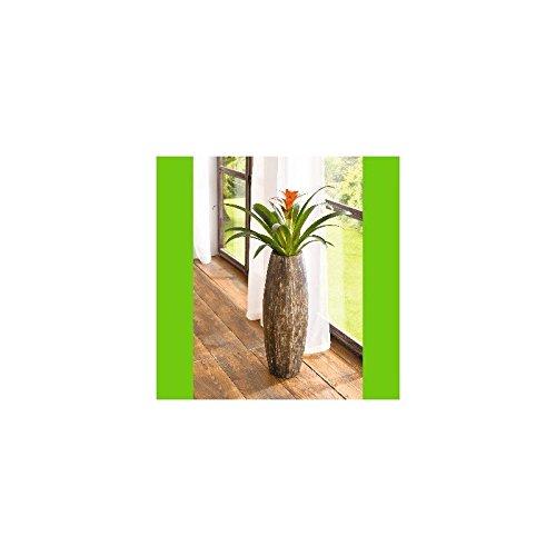 Frank Flechtwaren, 108022: Deko-Vase
