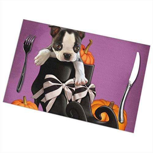 Nice Music Halloween Pumpkin French Bulldog Baby 6 Piece Set of Placemats Pc Party Kitchen Dining Room Home Table Place Mat Patio Holidays Decorations Decor Ornament Themed Print Pattern Kid Girls]()