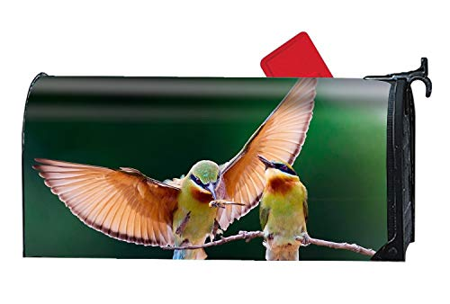 Horse Post Mount Residential - BABBY Hummingbird Couple Magnetic Mailbox Cover