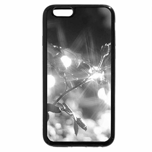 iPhone 6S Case, iPhone 6 Case (Black & White) - Shiny Roses