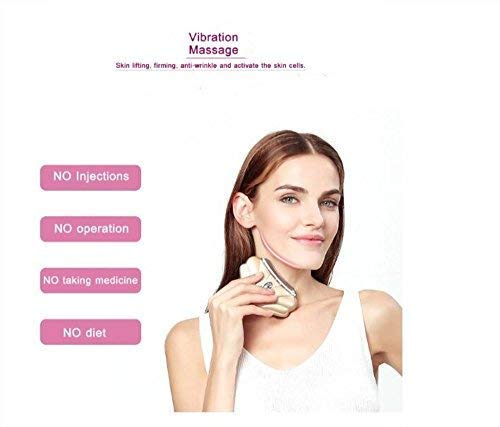 CHUHUAYUAN Microcurent Face Lift Face Firming Tool Anti Wrinkle Face Neck Skin Tightening LED Heated Vibration Face Massage (USB Rechargeable)