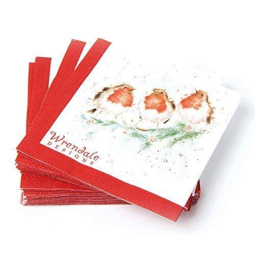 Robin de No/ël serviettes en papier/?/Lot de 20/serviettes en papier 3/plis