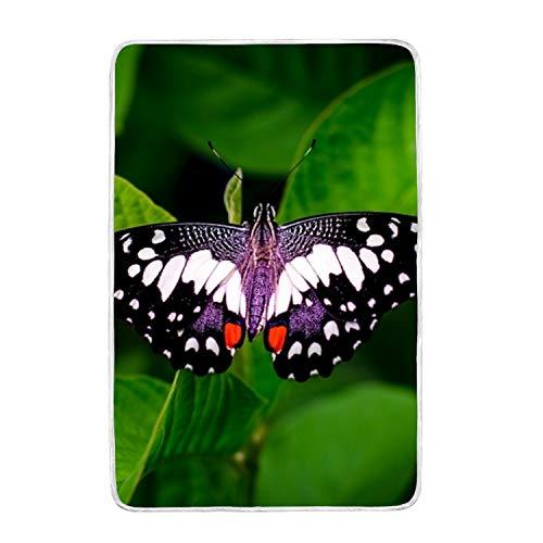 suhongliang Animal Biology Blur Print Throw Blanket Comfort
