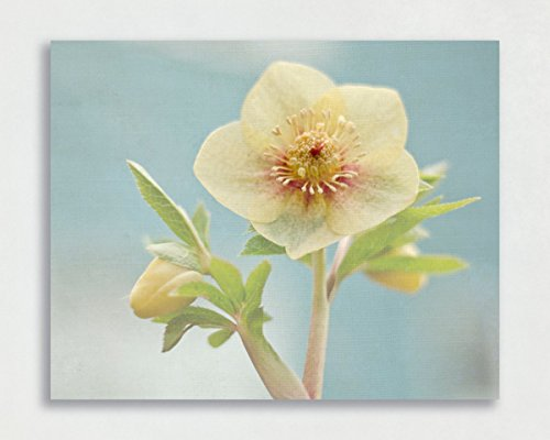 Flower Canvas Art, Yellow and Blue Wood Picture, 8x10 to 30x40 inches, Ready to Hang Gallery Wrap Canvas or Wood Plank Art