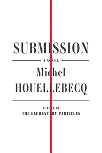 Image result for houellebecq submission