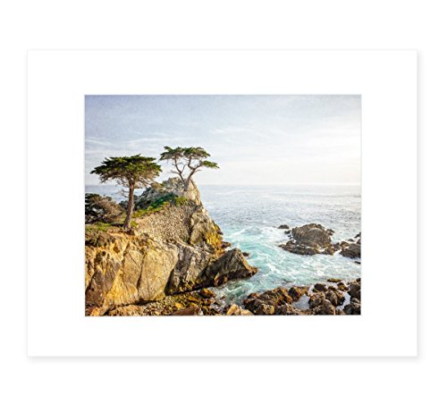 California Coastal Wall Art, Lone Cypress Tree Picture, 8x10 Matted Photographic Print (fits 11x14 frame), 'Lone Cypress' by Offley Green