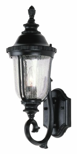 Trans Globe Lighting 4021 BK Outdoor Chessie 20